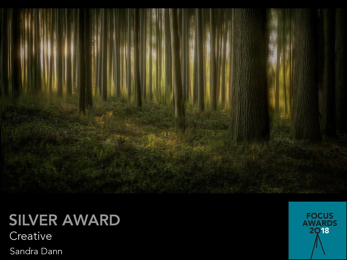 award_11093_11093_4761984157.jpg