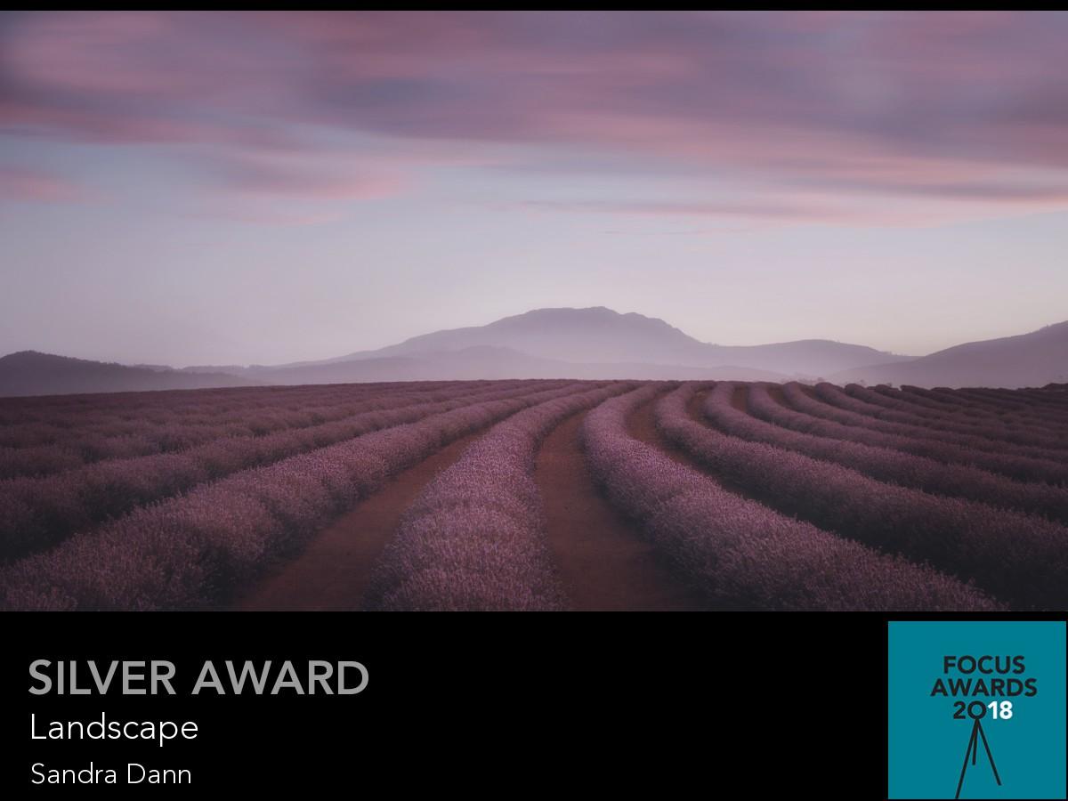 award_11110_11110_4849234661.jpg