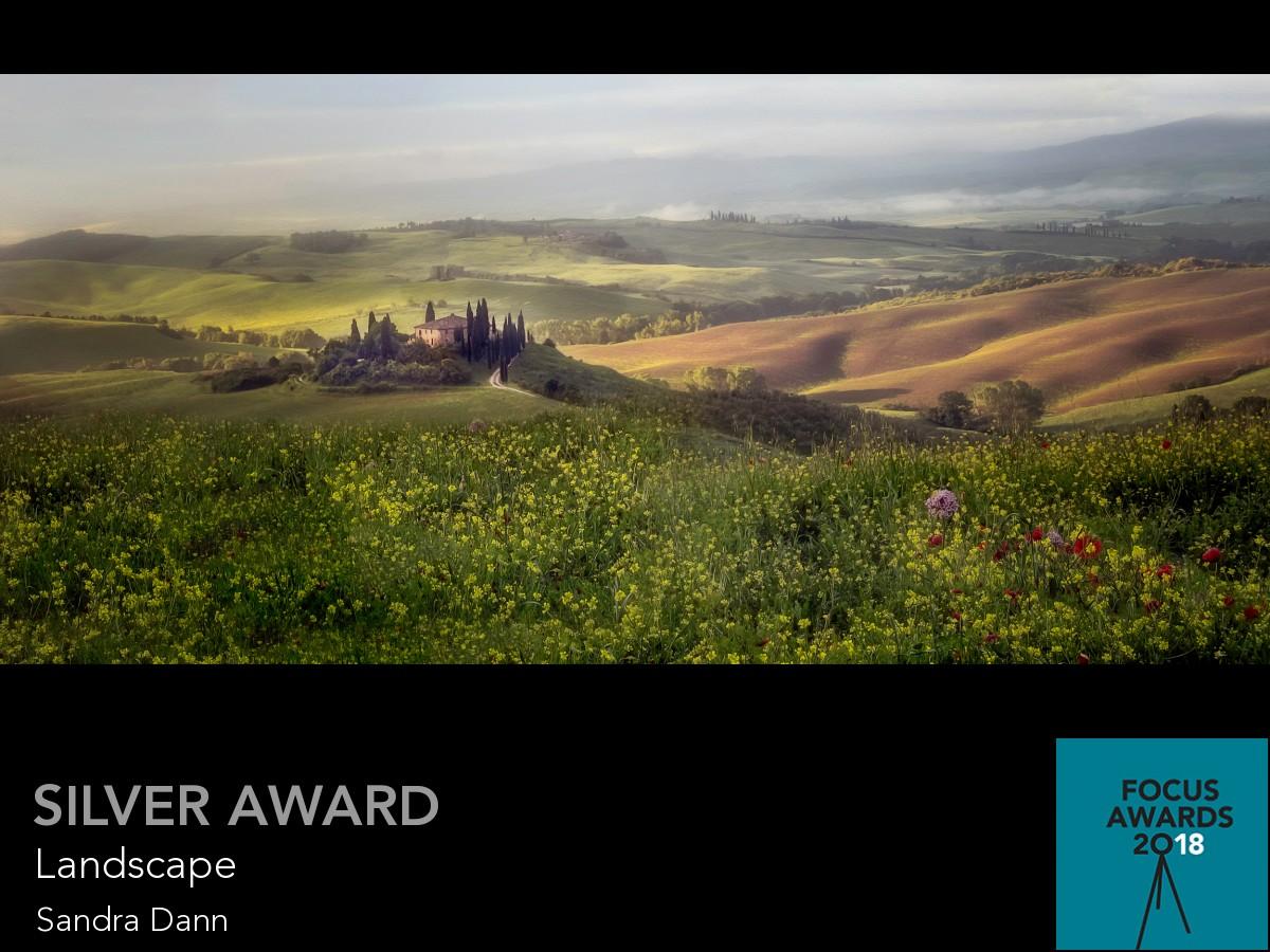 award_11113_11113_2555923918.jpg