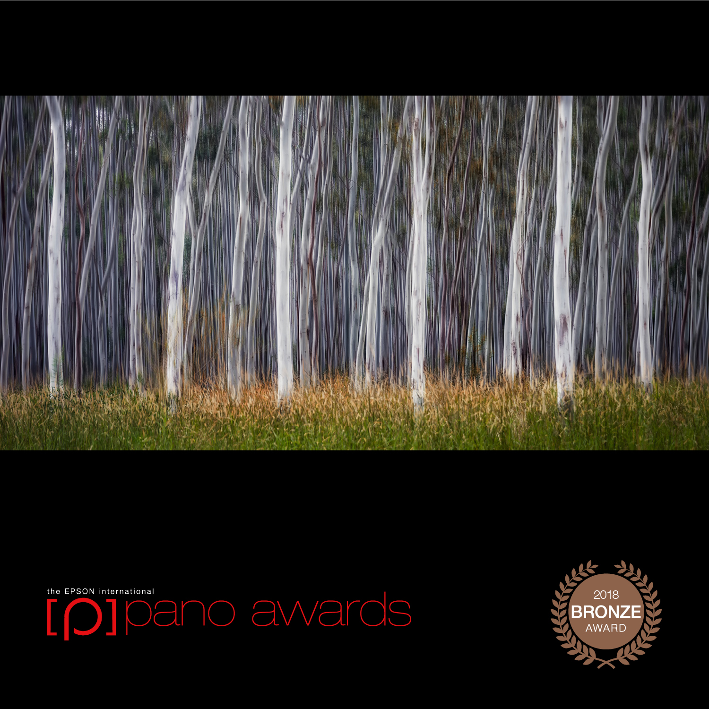 2018-Epson-Pano-Awards-Amateur-Bronze-308.jpg