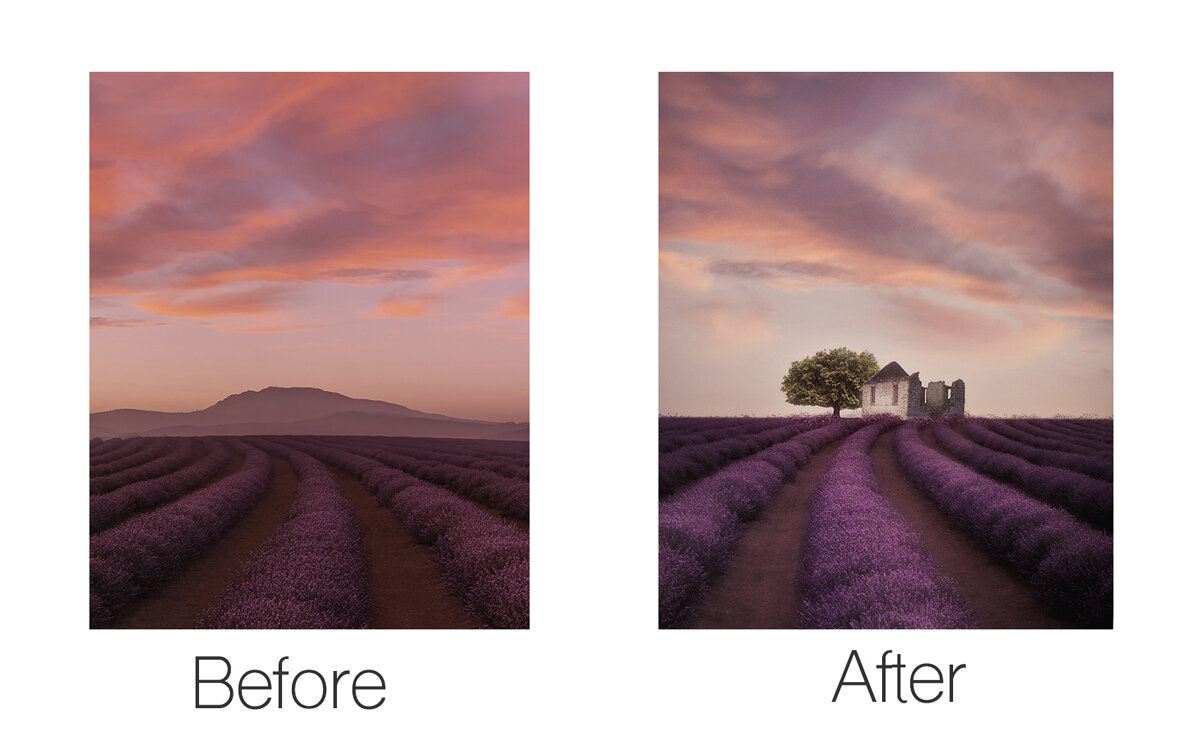 Before and After LAvender Tree and House.jpg
