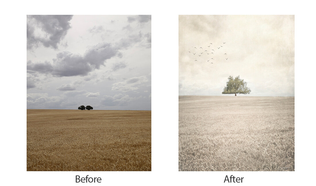 Cowra Tree Before and After copy.jpg