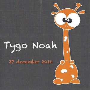 Tygo Noah.jpg