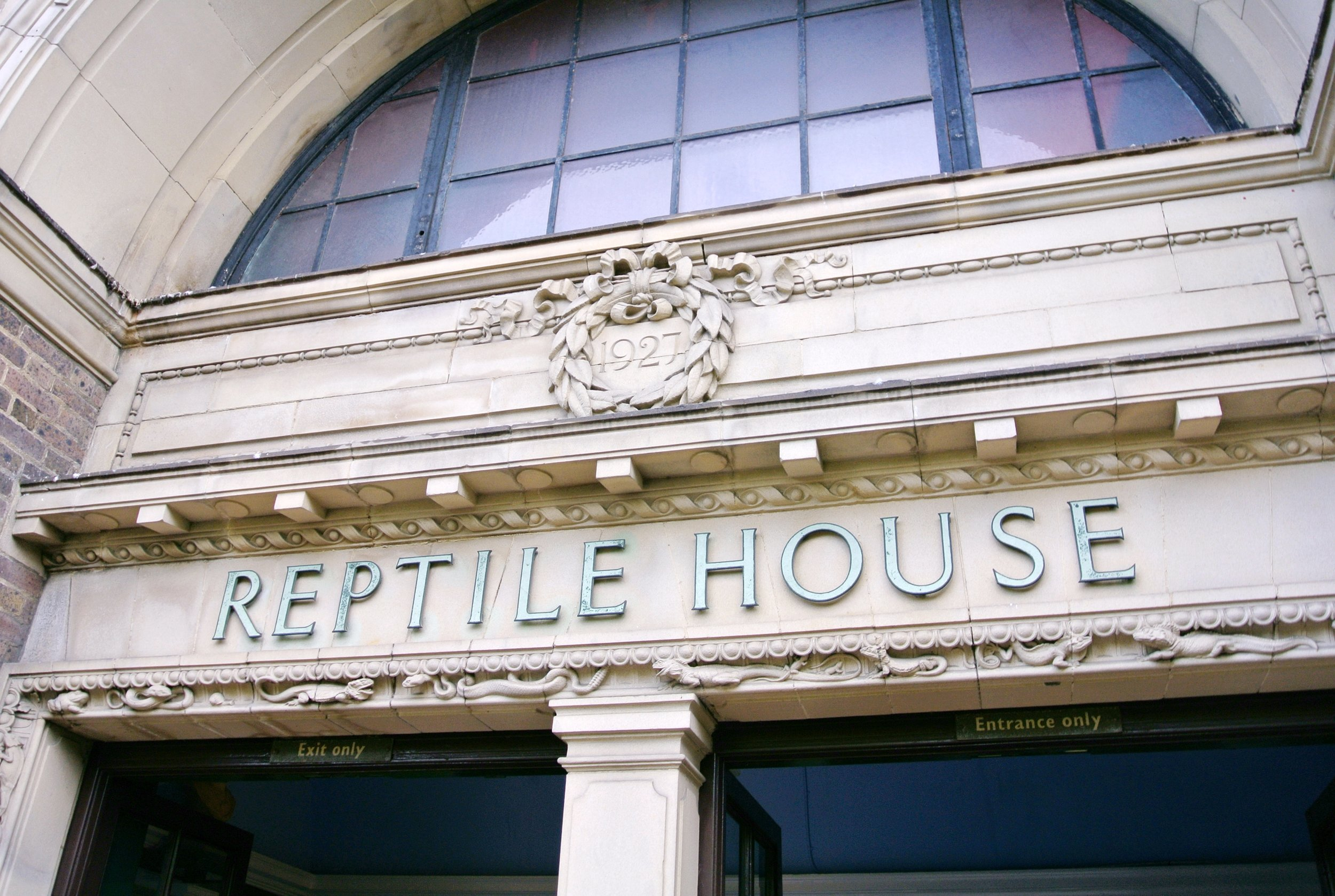 Reptile House, London Zoo | ebbony&lune
