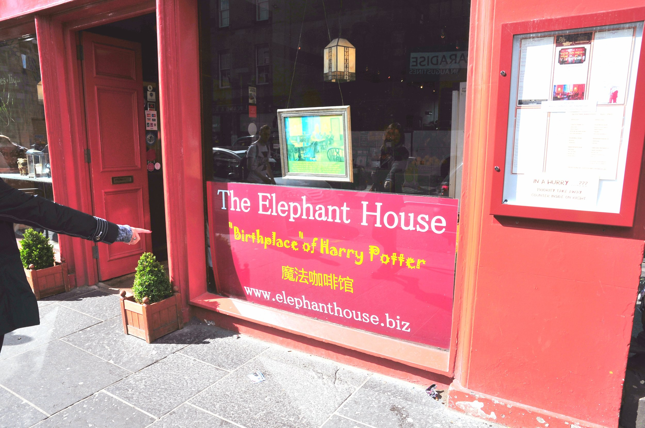 The Elephant House | ebbony&lune