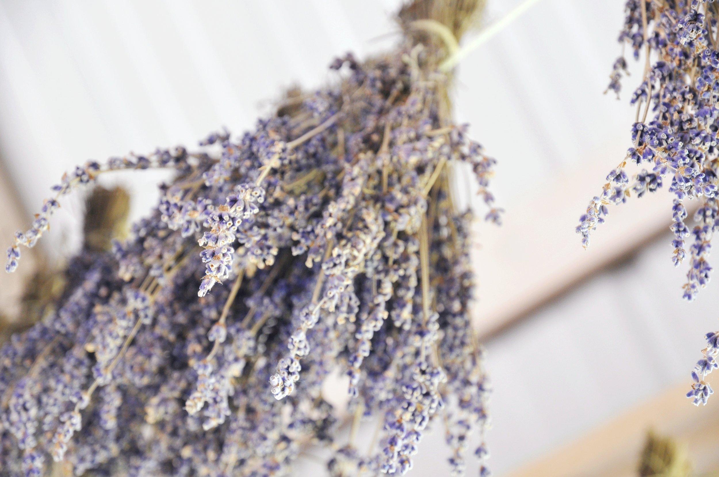 Hanging Dried Lavender Bundles   ebbony&lune