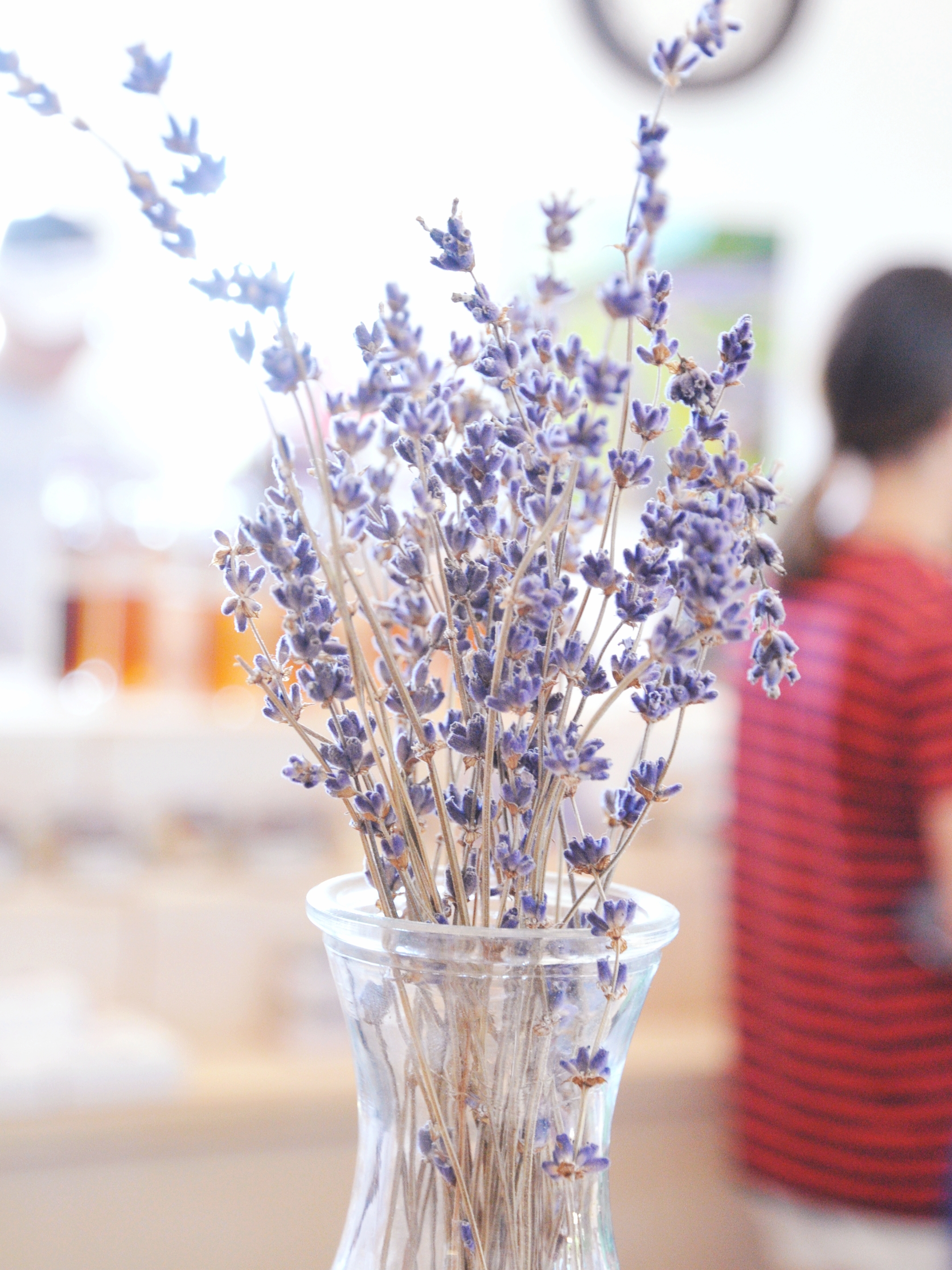 Dried Lavender Bundle | ebbony&lune
