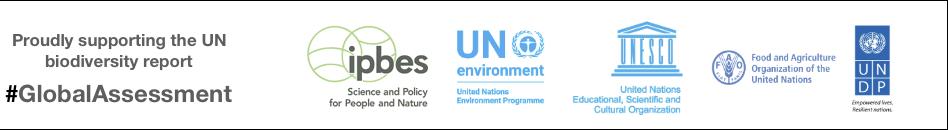UN Report.png