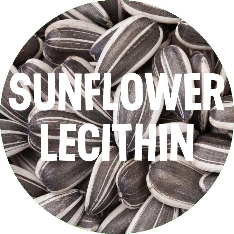 sunflowerFINAL.png