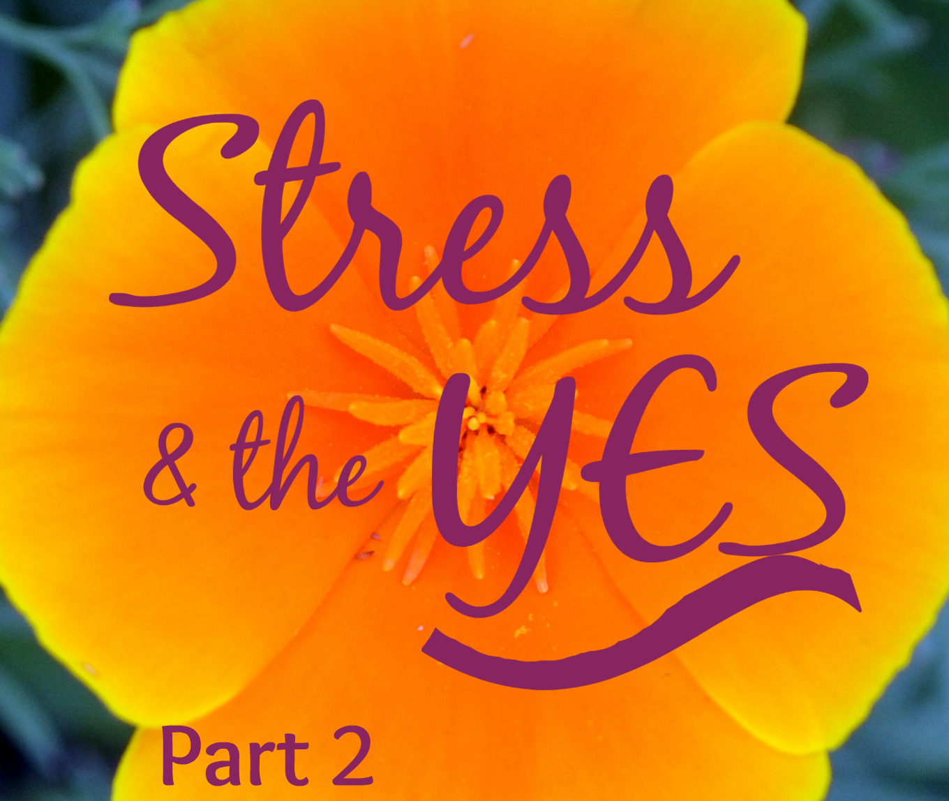 stress and yes p2b.jpg