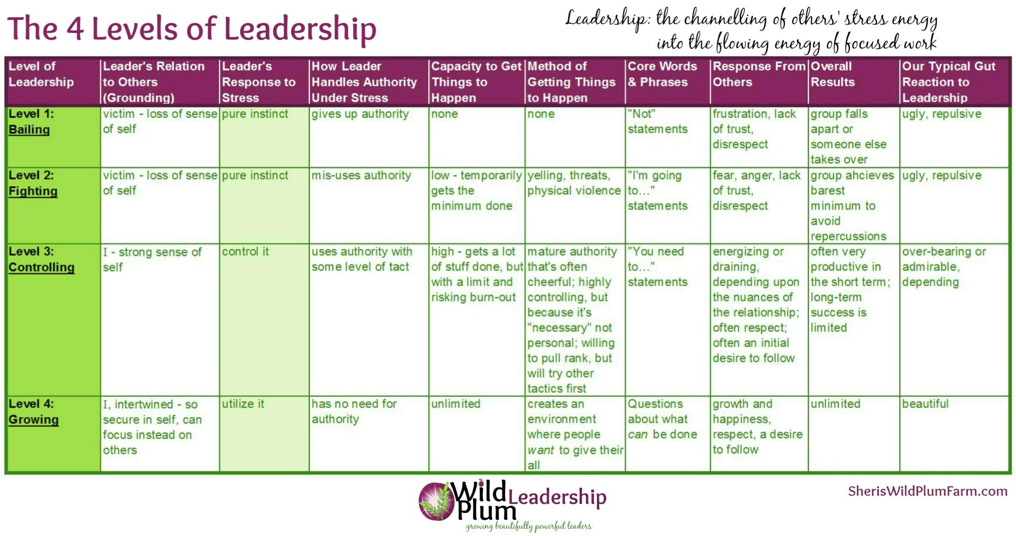 4 levels of leadership WPF growing3.jpg