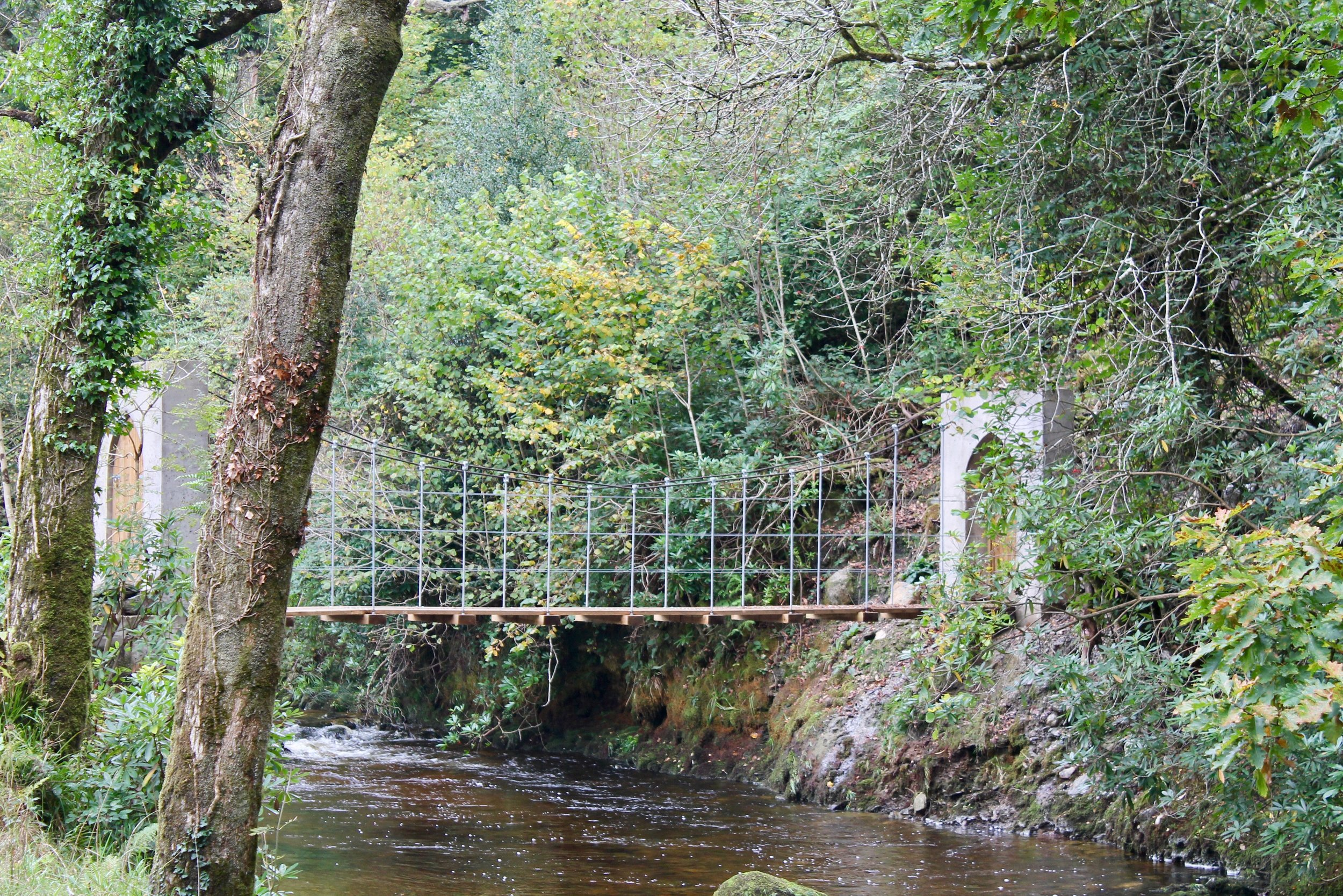 6. Suspension Bridge .jpg