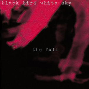 The Fall - EP - Black Bird White Sky2012