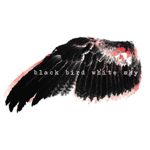 Black Bird White Sky  - Black Brd White Sky2011