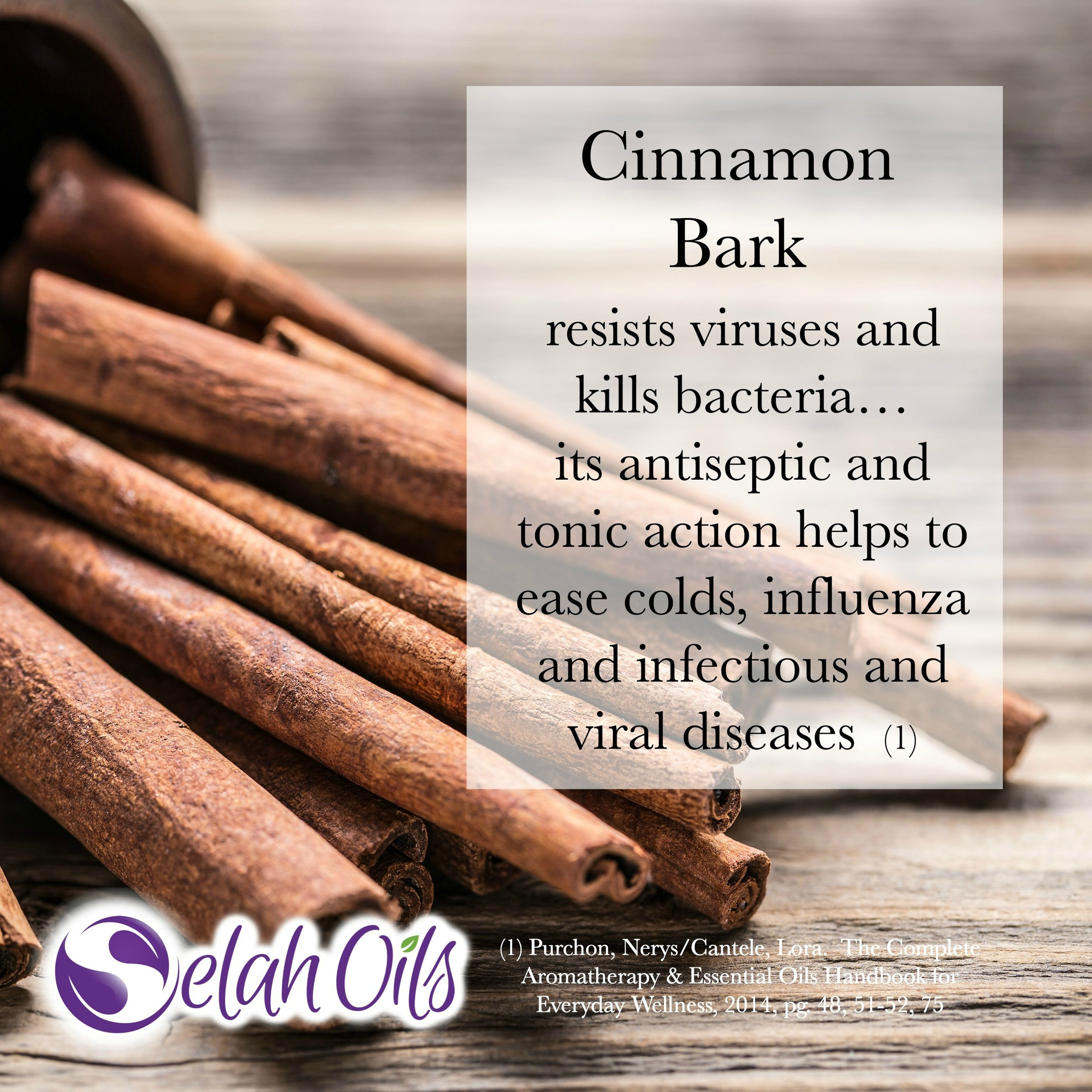 Cinnamon Bark Benefits Square.jpg