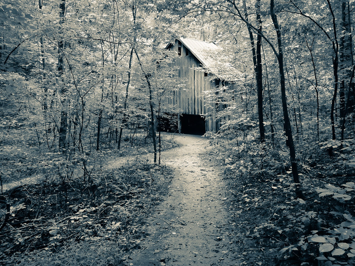 Lost Tobacco Barn