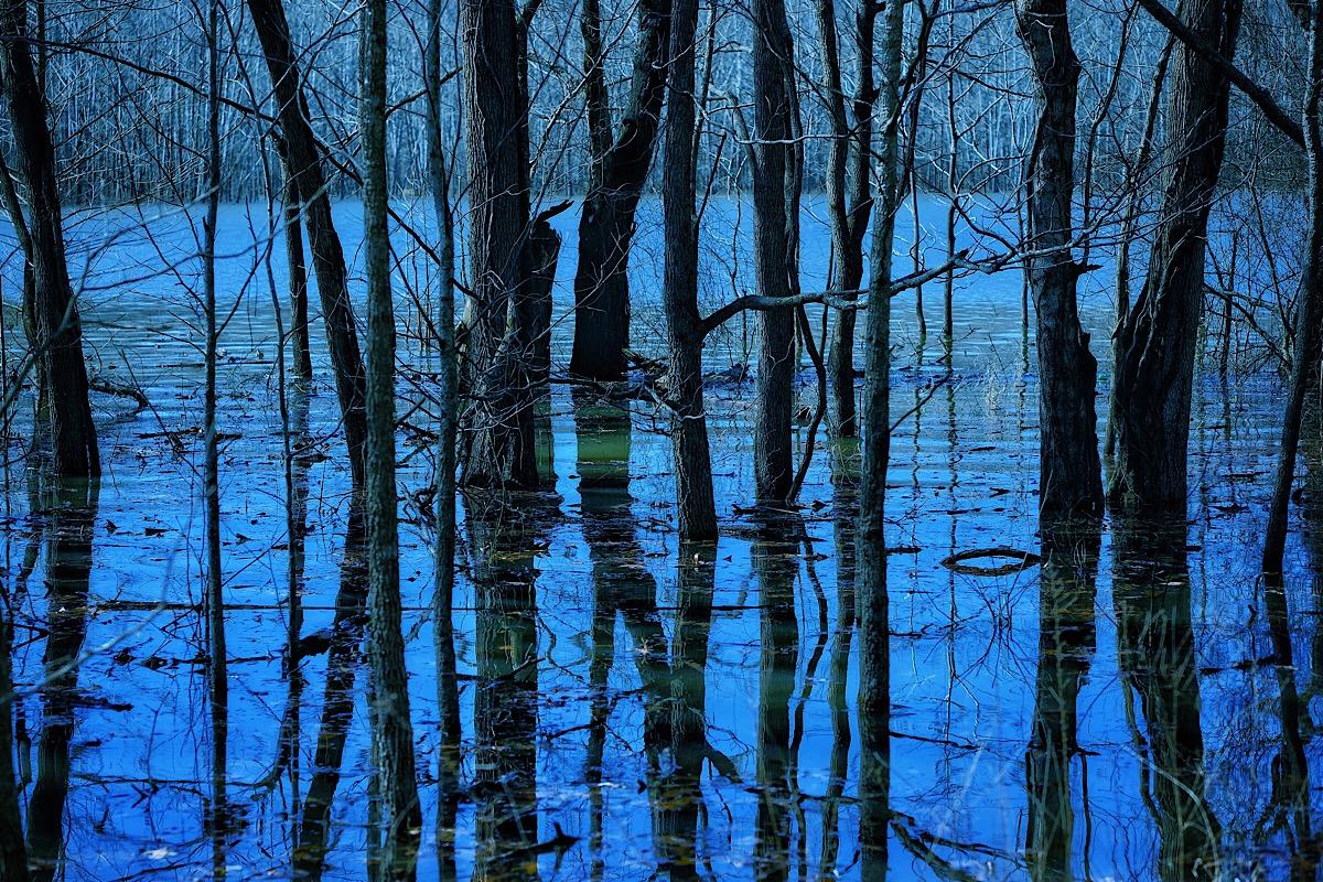 Blue Biyou.jpg