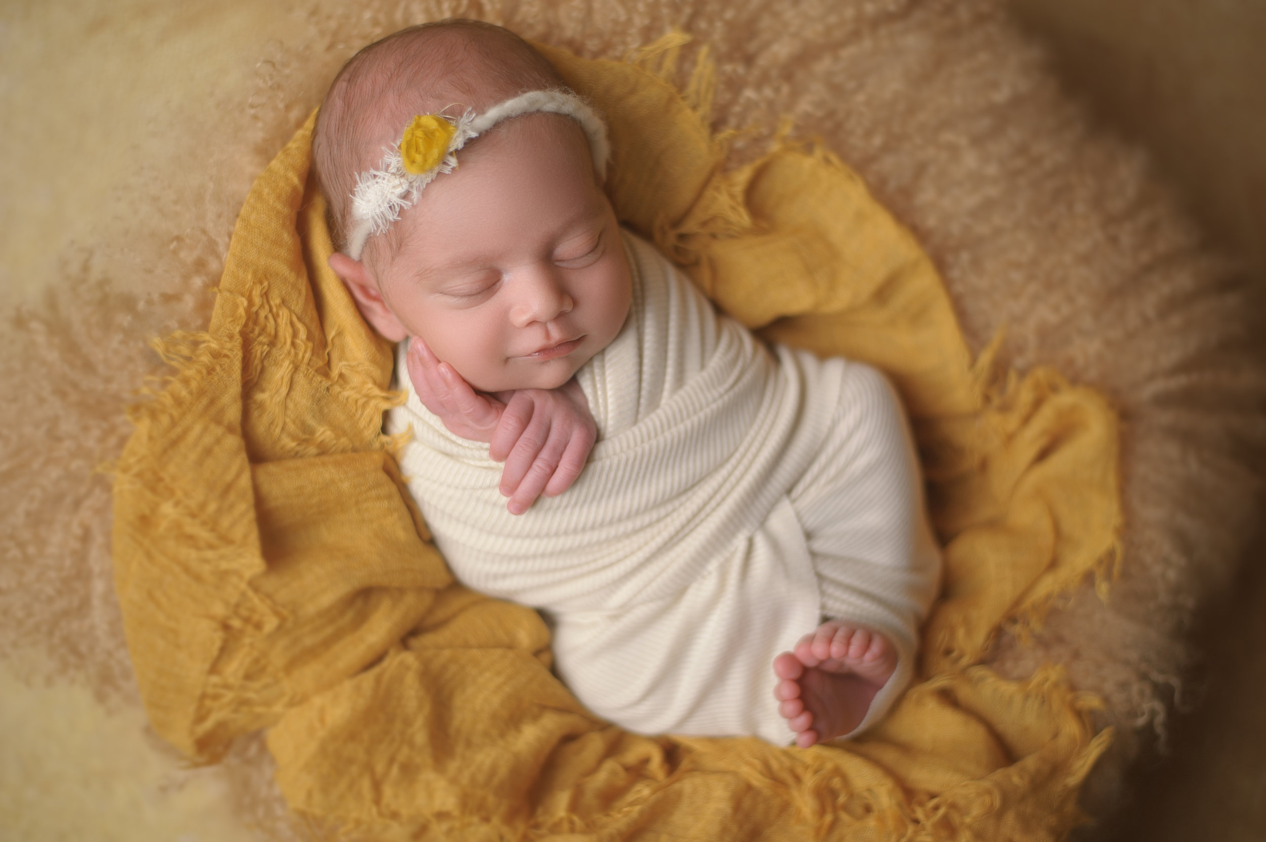 Chicago-newborn-photographers