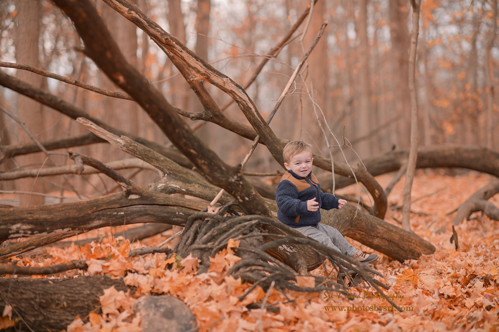Beautiful outdoor Fall family photos Chicago