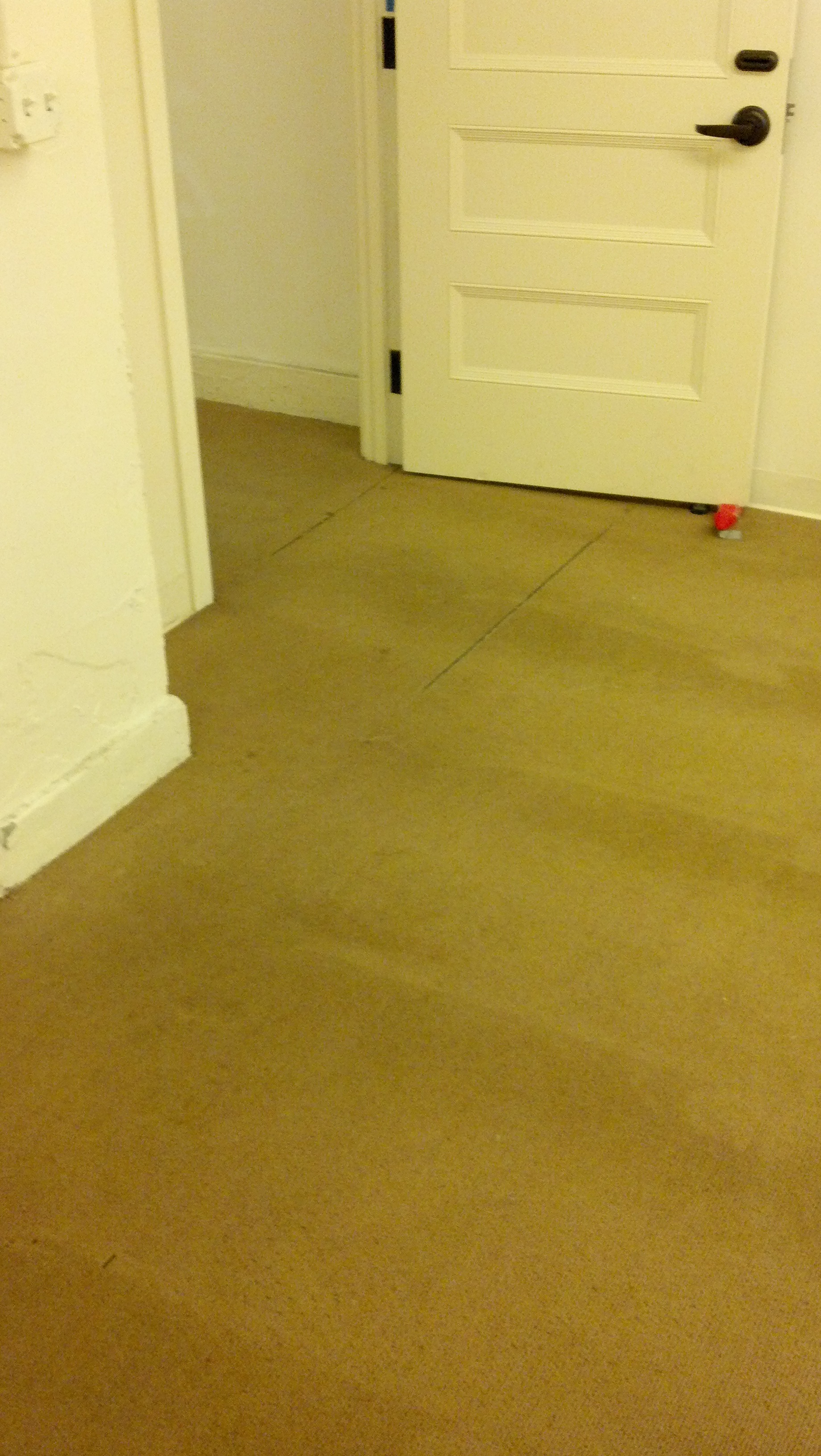 Cavallo Point Commercial Carpet Cleaning After.jpg
