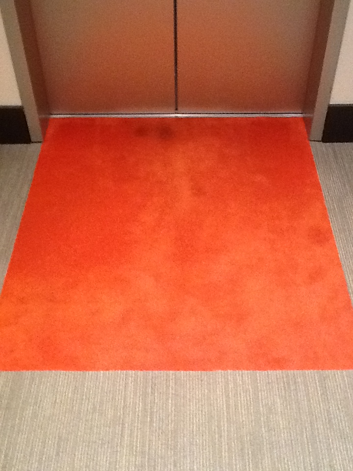 Riverbed Carpet Cleaning Before.JPG