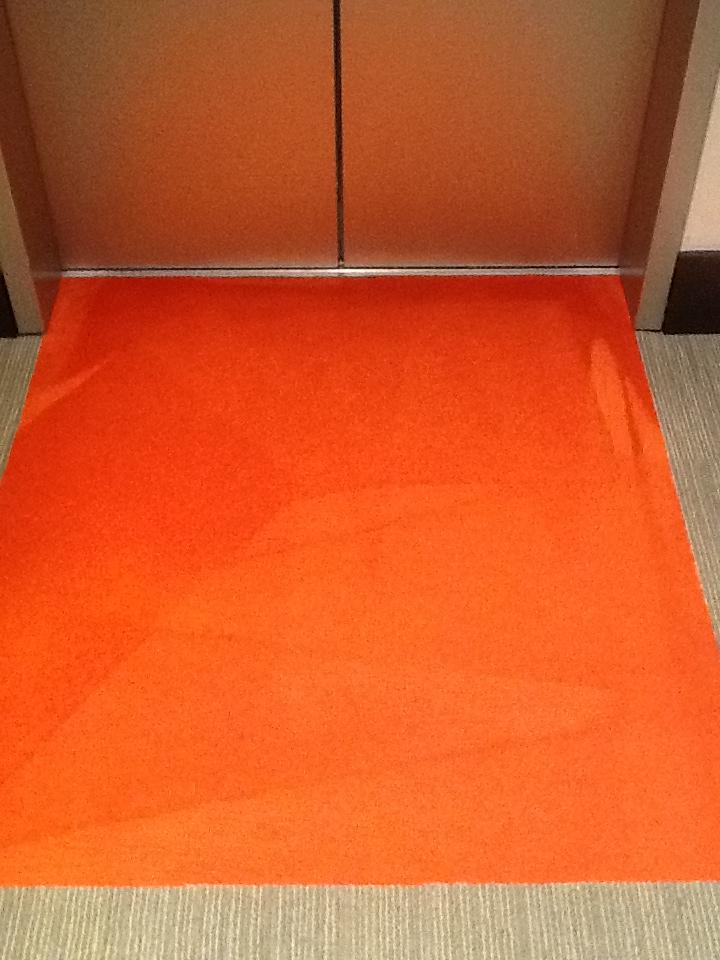 Riverbed Carpet Cleaing After.JPG