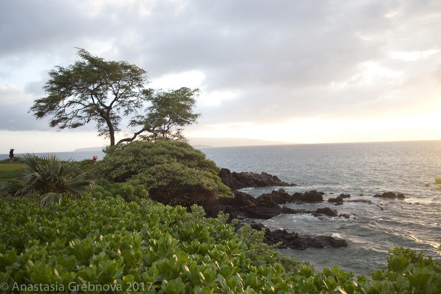 thumbnail-Maui at Dusk.jpg