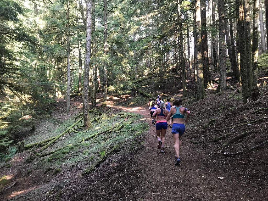 Trail Running in Moran State Park