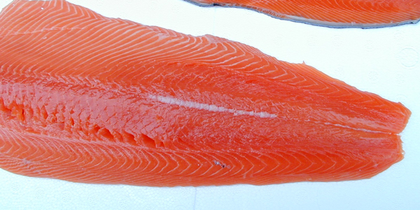 Sockeye Salmon - We can sell this fish Whole, in Fillets or cut into Steaks then Vacuum Sealed. Call for the best price (360) 640-2041