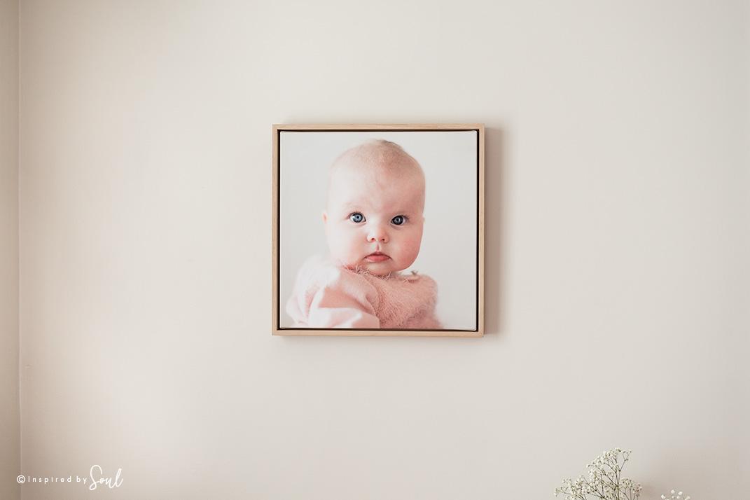 newborn and baby photographer tas