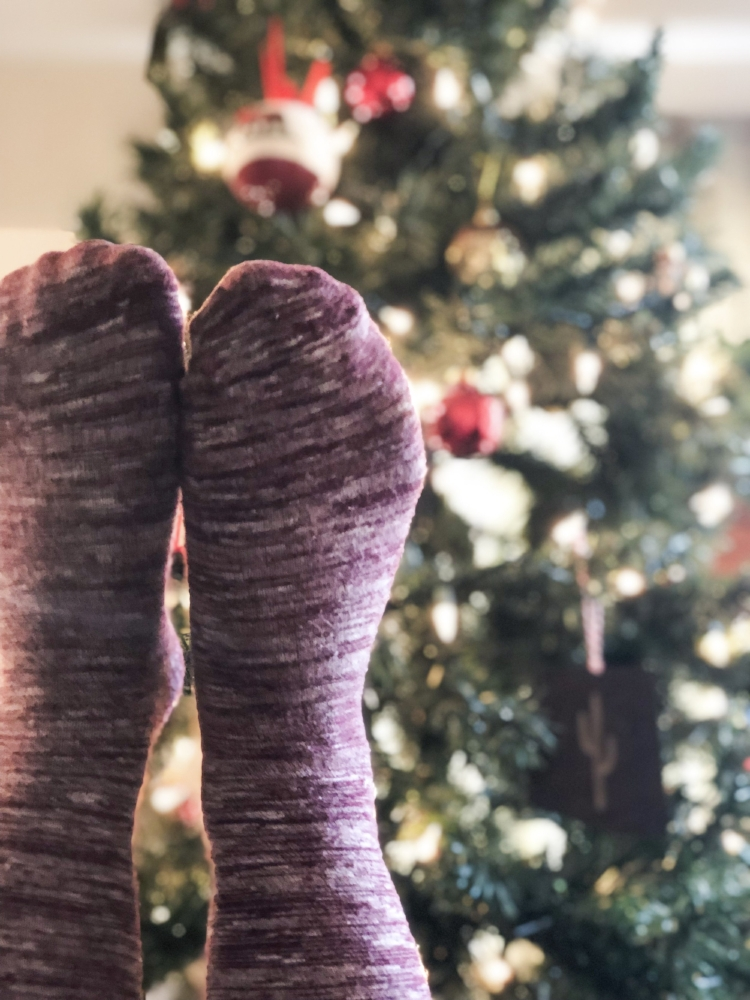 Christmas Hoiday Tips and Tricks Warm Weather https://www.findingarizonapodcast.com/finding-az-engagement/