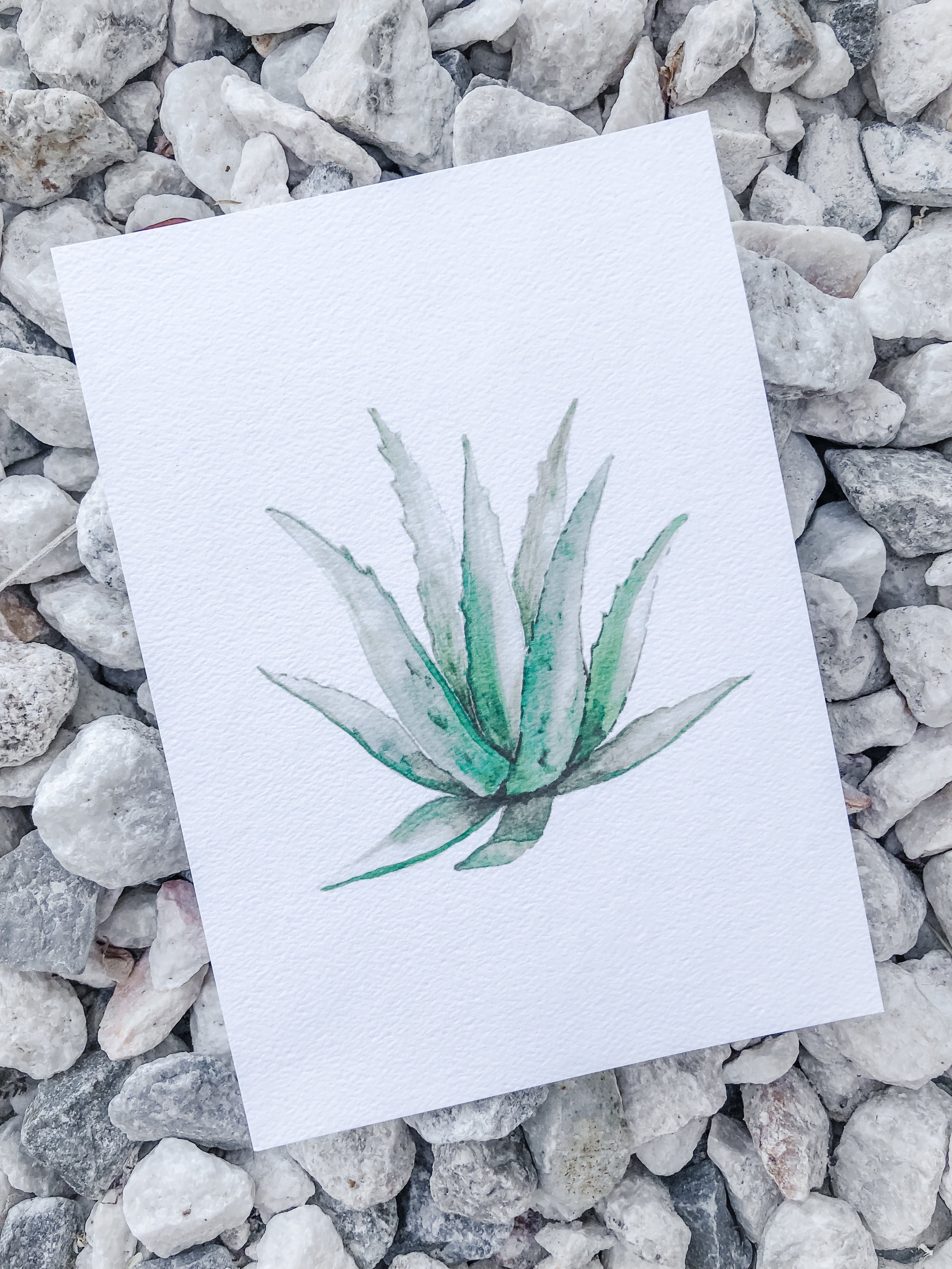 Design Squeeze Agave Water Color Custom Invitation