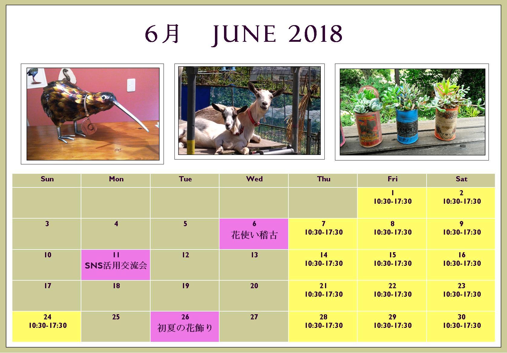 June 2018.jpg
