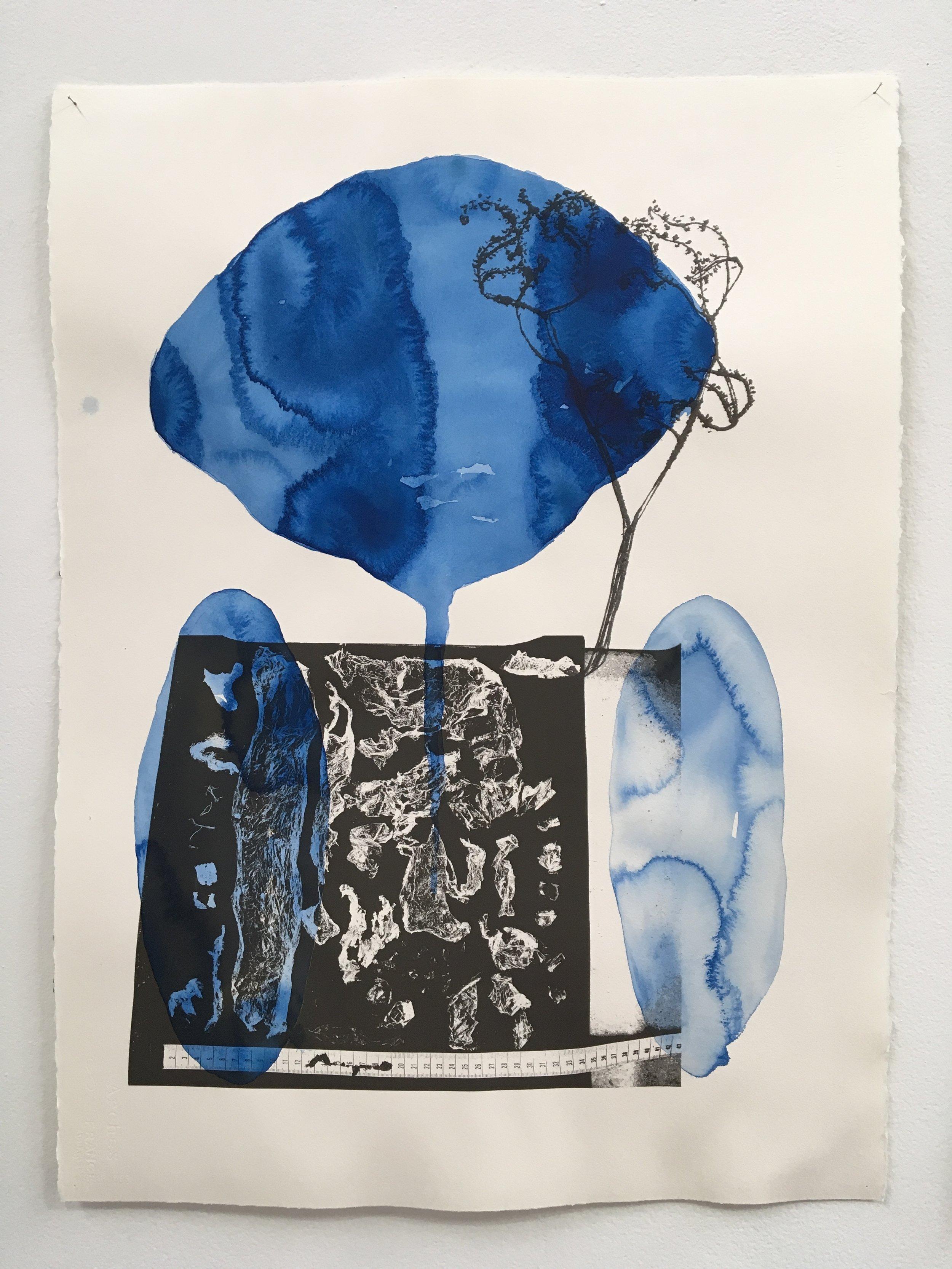 Judy Watson heron island 2 2009-16 acrylic and digital print on paper 77 x 57 cm.jpg