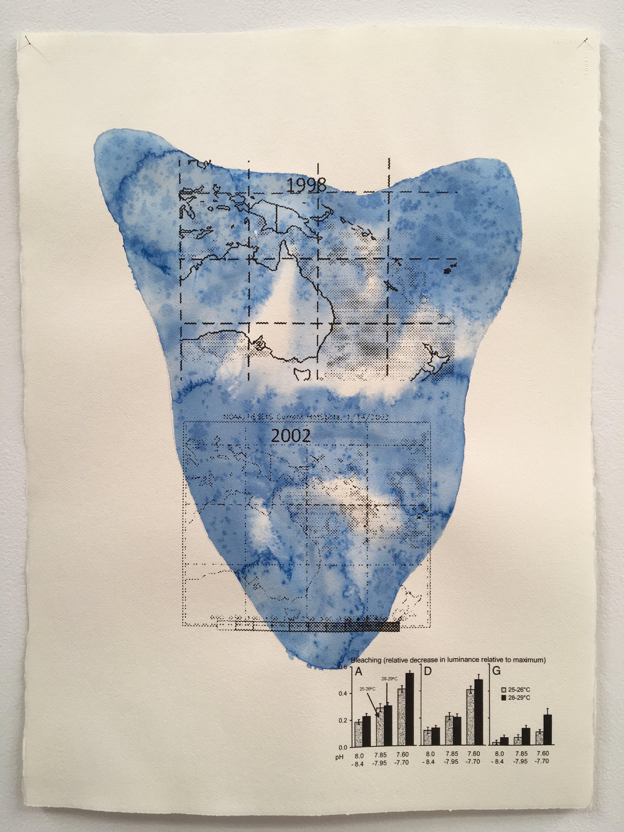 Judy Watson heron island 3 2009-16 acrylic and digital print on paper 77 x 57 cm.jpg