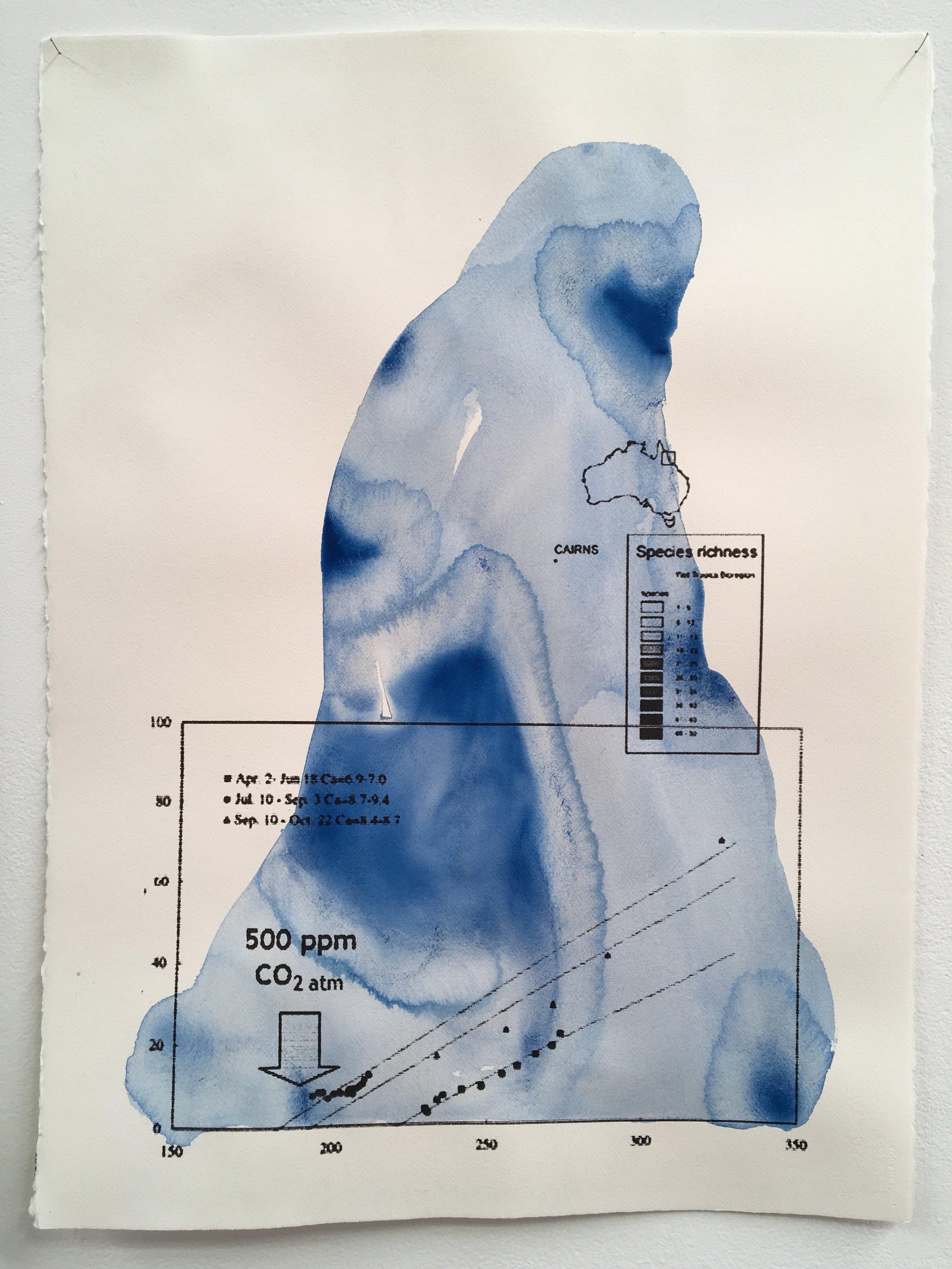 Judy Watson heron island 5 2009-16 acrylic and digital print on paper 77 x 57 cm.jpg