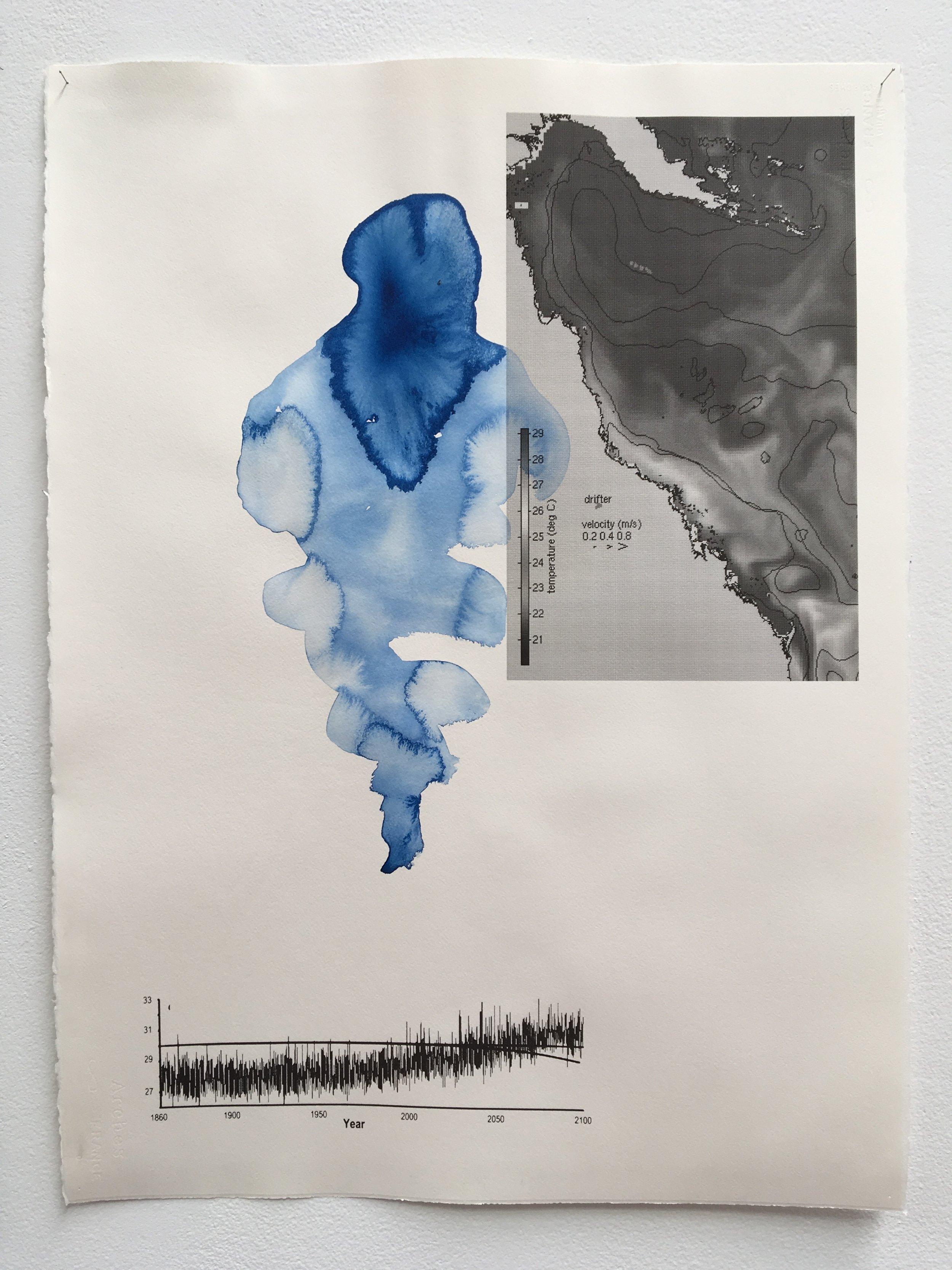 Judy Watson heron island 7 2009-16 acrylic and digital print on paper 77 x 57 cm.jpg
