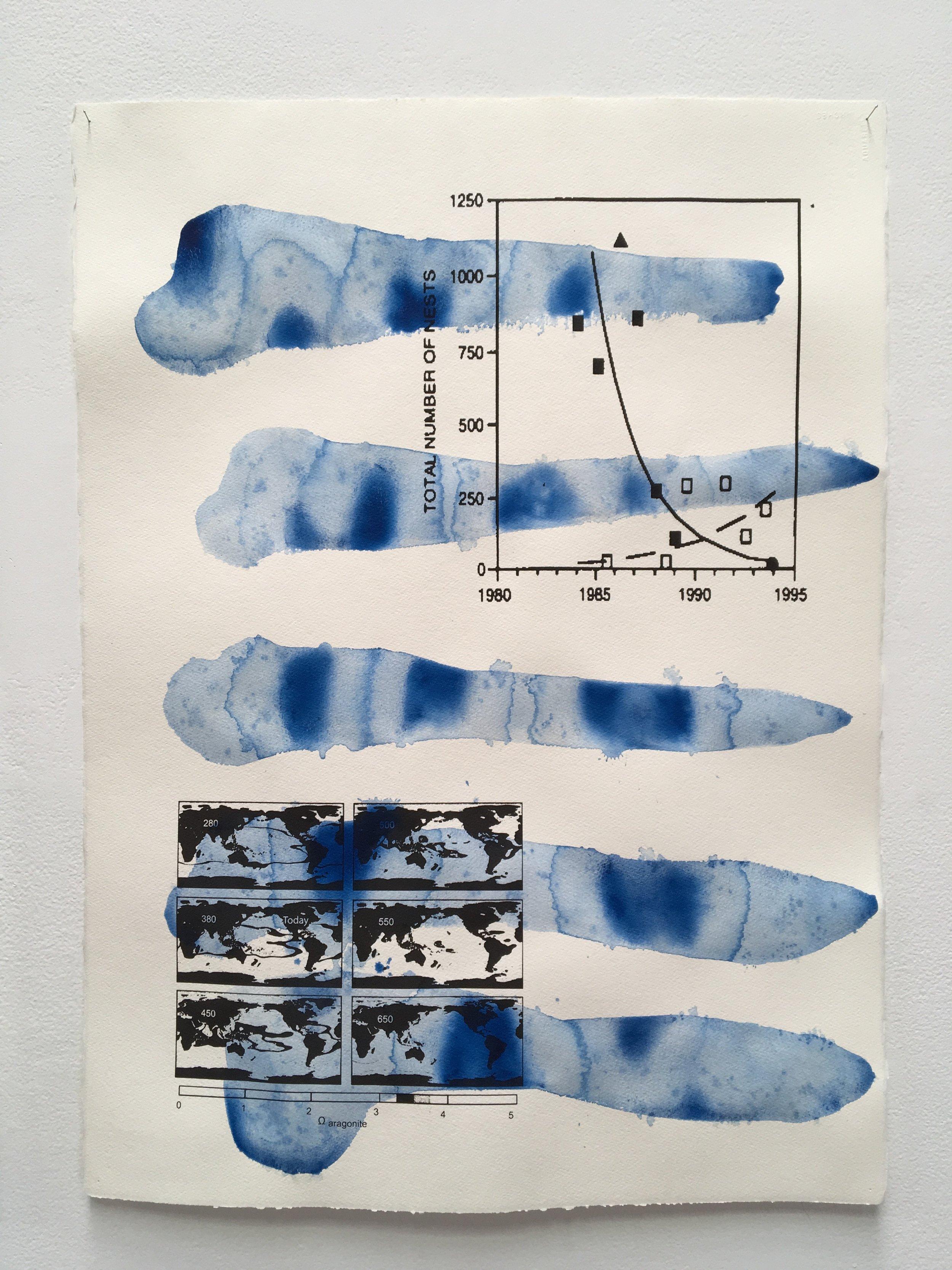 Judy Watson heron island 9 2009-16 acrylic and digital print on paper 77 x 57 cm.jpg
