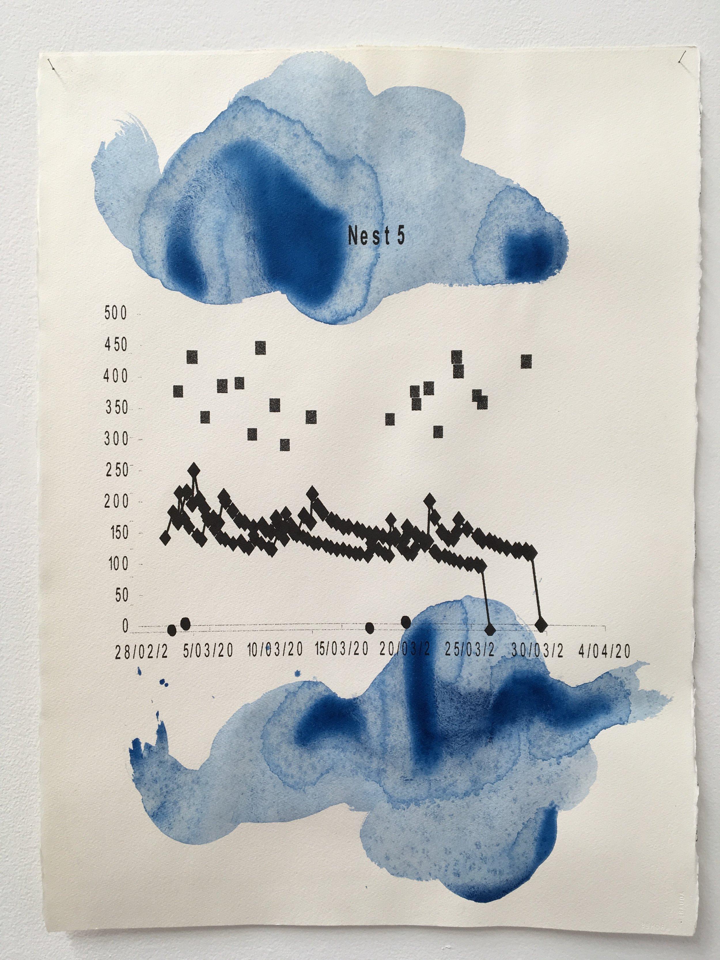 Judy Watson heron island 12 2009-16 acrylic and digital print on paper 77 x 57 cm.jpg