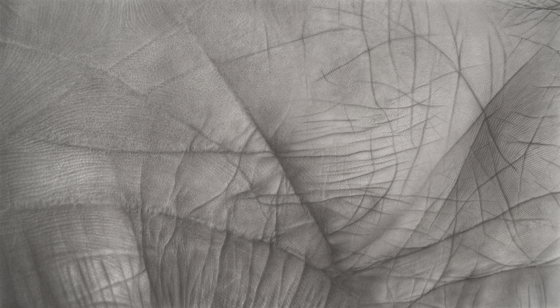 Aevum, 42 x 72, Charcoal and Pastel on digital ghost print