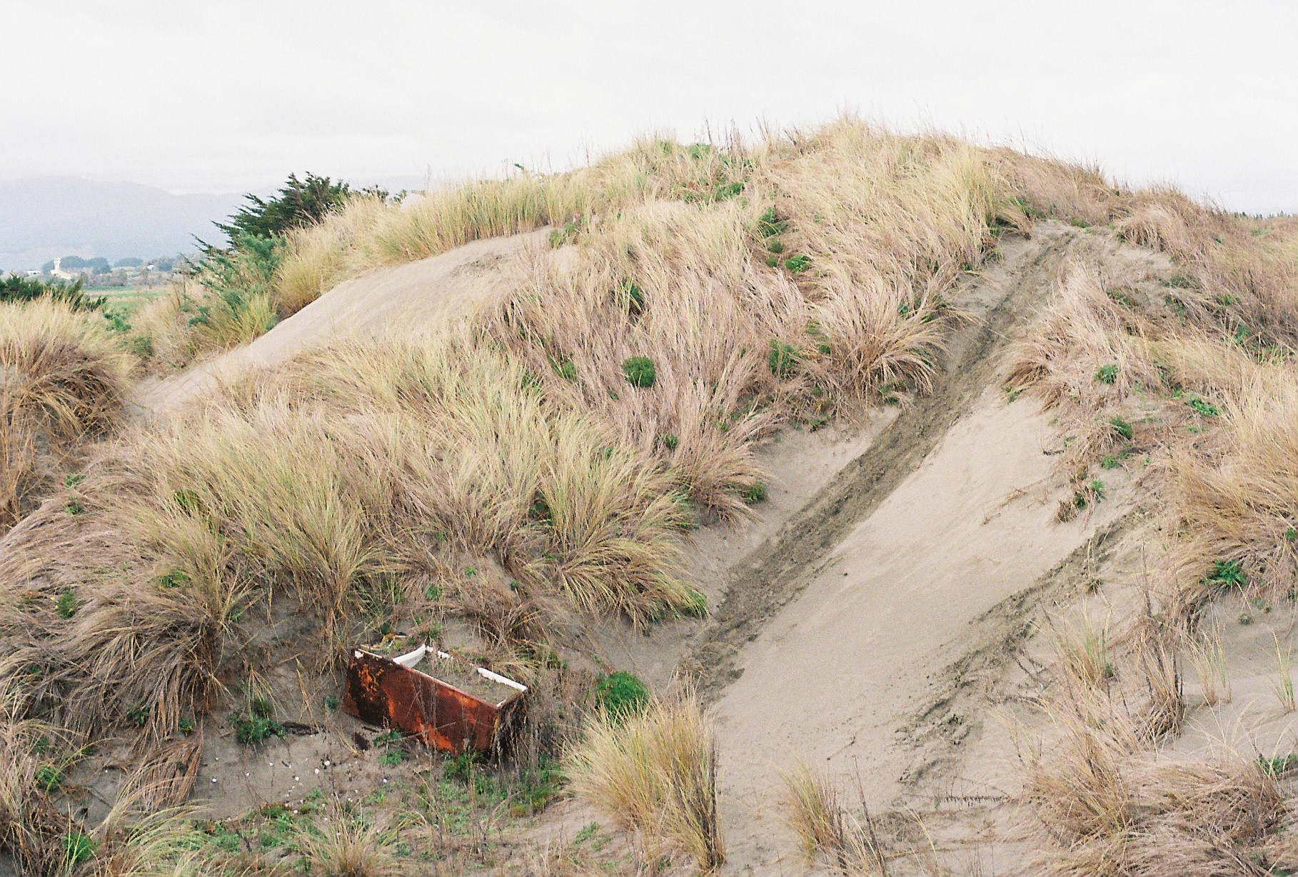 An unwanted fridge on the dunes