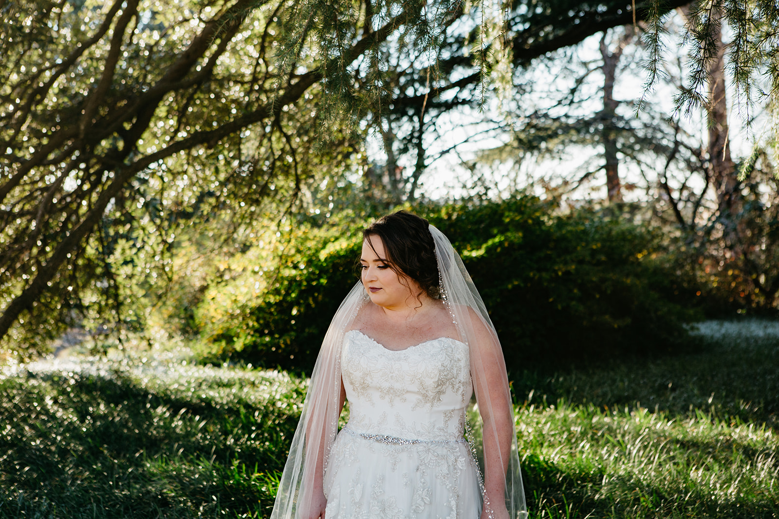 bridal portraits by south carolina wedding photography alexis schwallier-177.jpg
