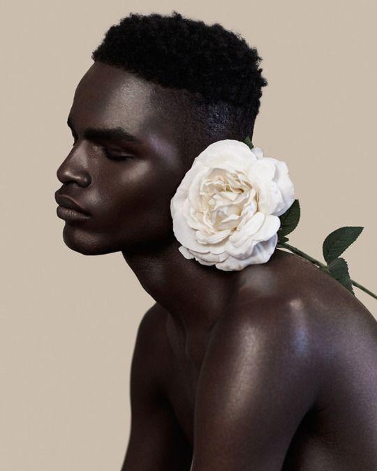white_flower1.jpg