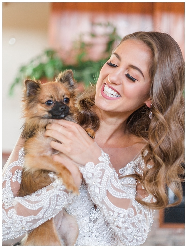 Ashton Creek Vineyard Wedding Shoot - with Dog 'Beanie'
