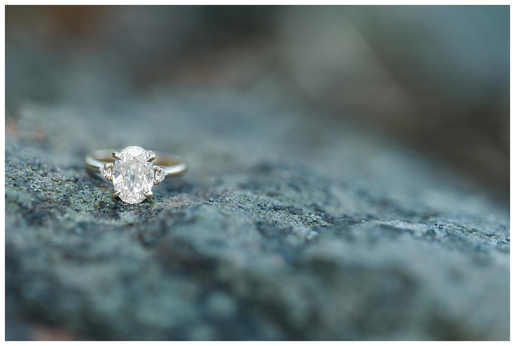 Virginia-Engagement-Photographers-Sperryville-_0783.jpg