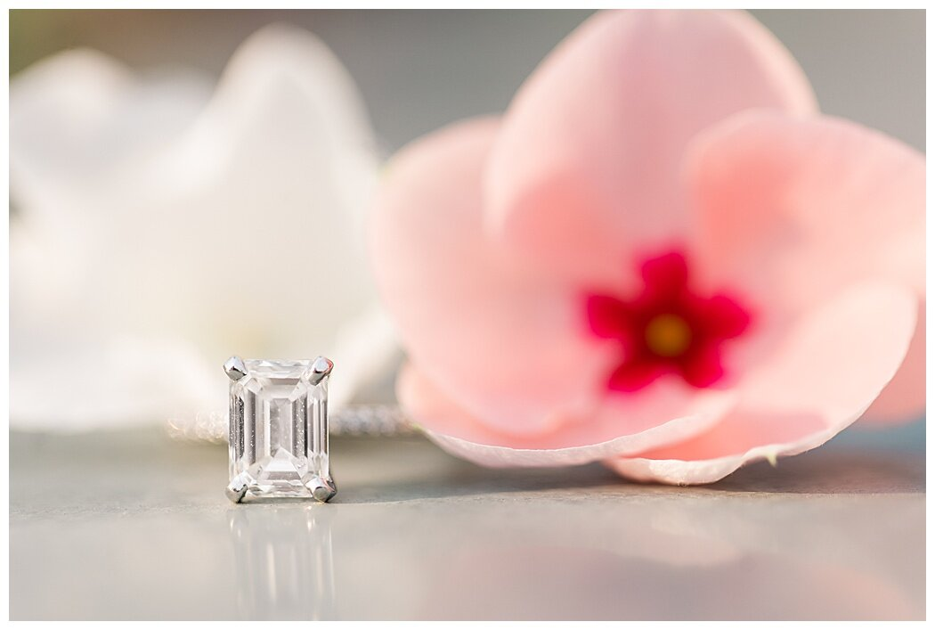 richmond-engagement-vmfa-1246.jpg