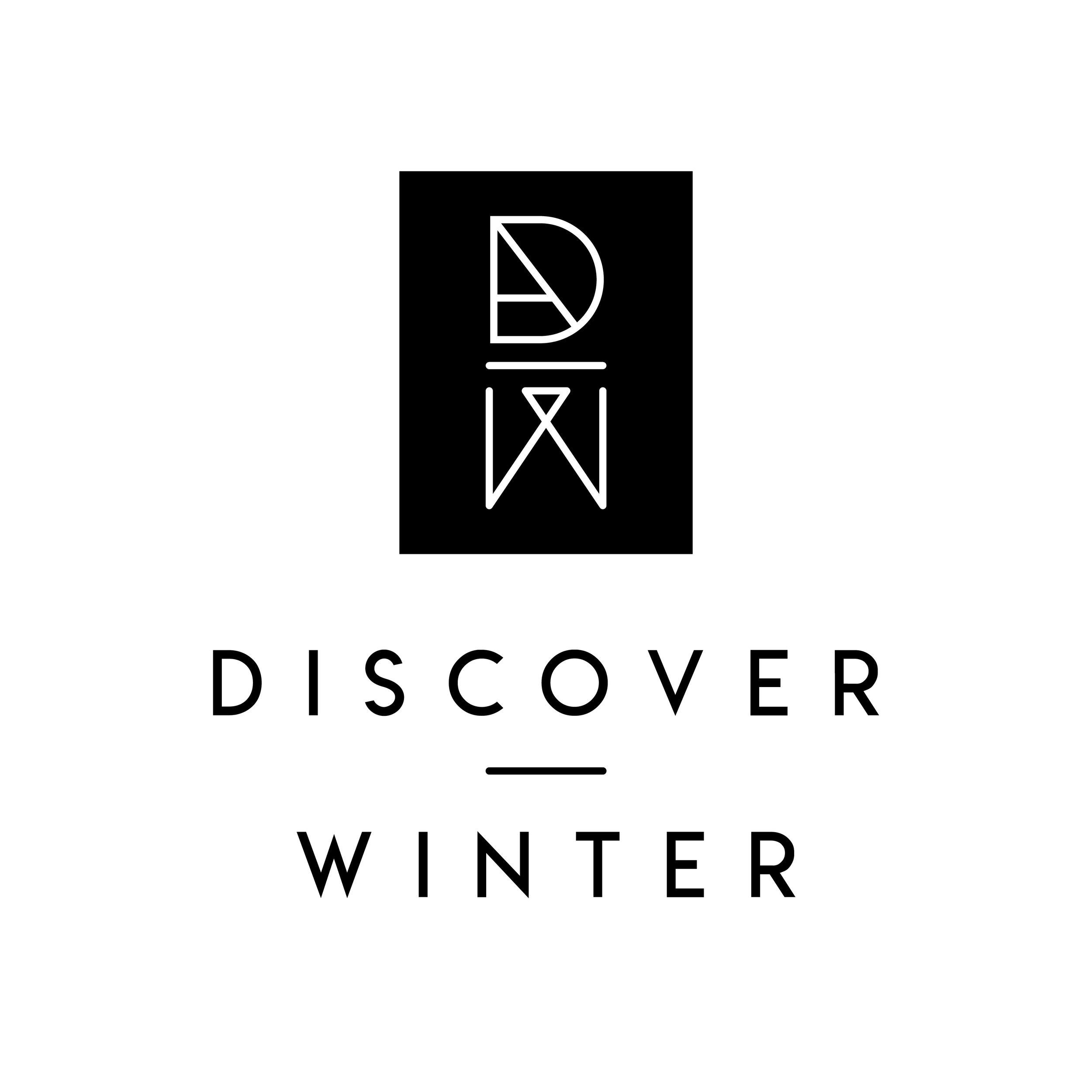 Discover Winter Logo Design