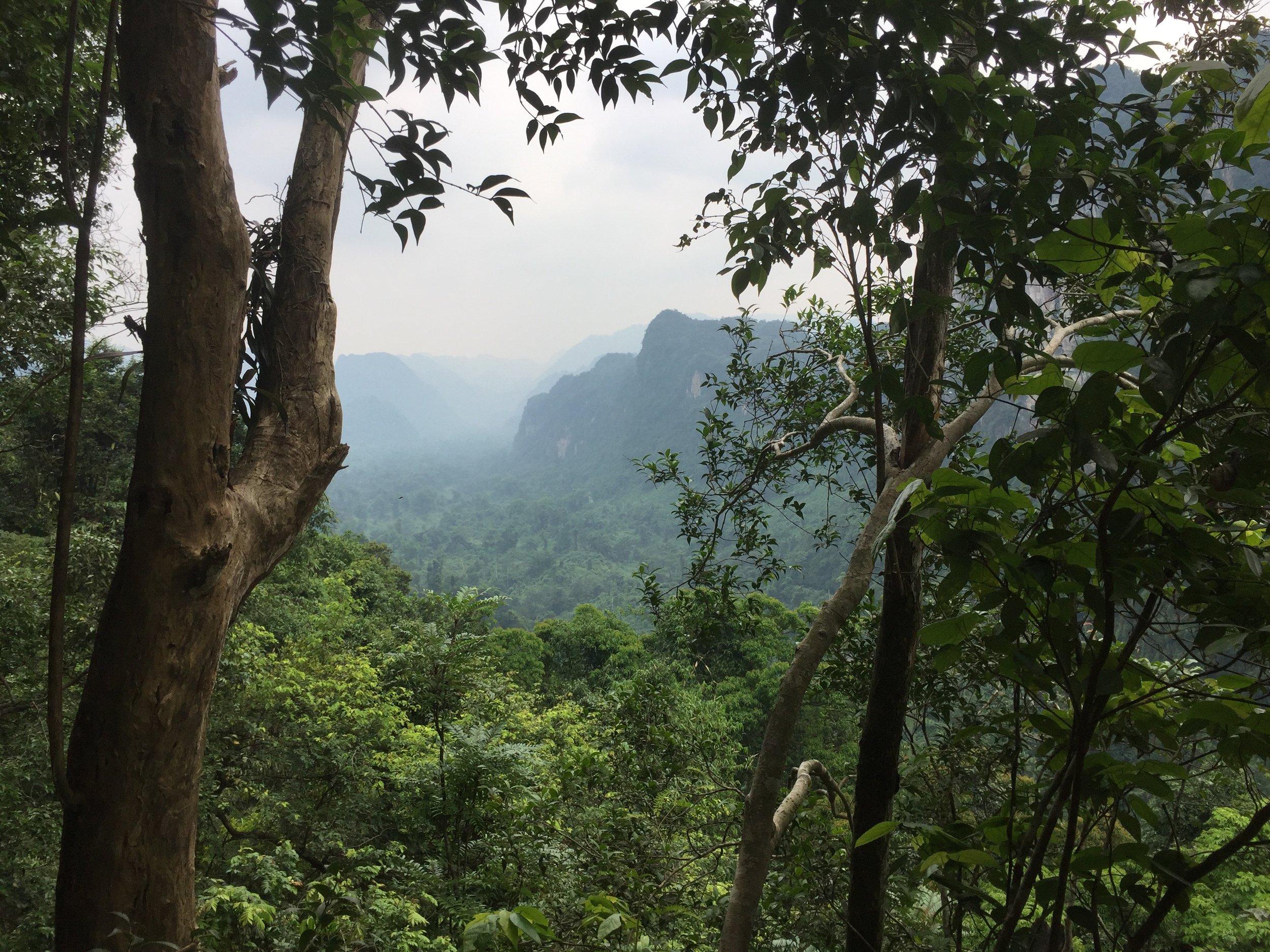 Eco Phong Nha Collective -