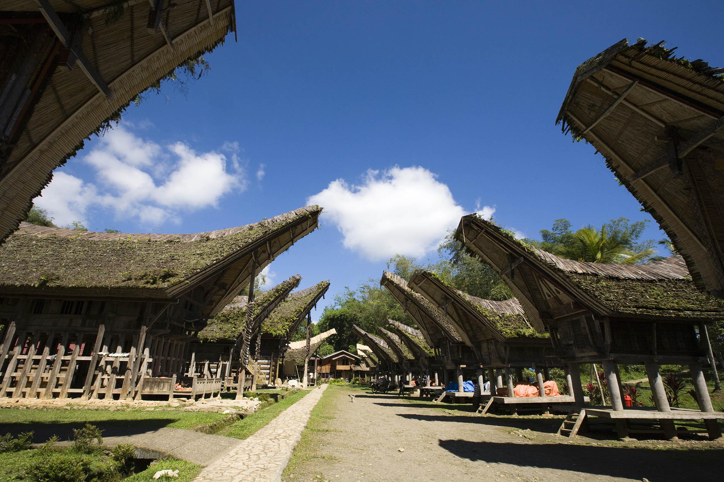 Toraja HIghlands -