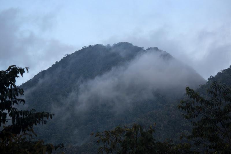 Bukit Pagon(coming soon) -